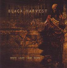 """Black Harvest - """"White Light Came Down"""""""